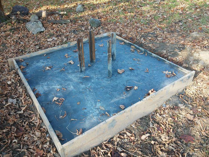 Arboretum rok szkolny 2015/2016